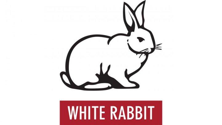 This is a JoJo white rabbit
