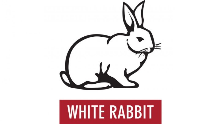 This is a JoJo white rabbit