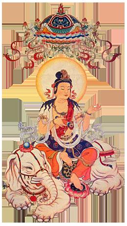 JoJo Samantabhadra