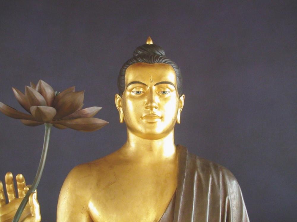 JoJo Bodhisattva