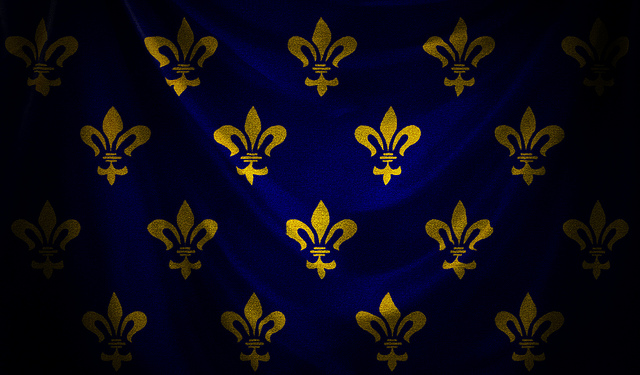this is a JoJo French flag