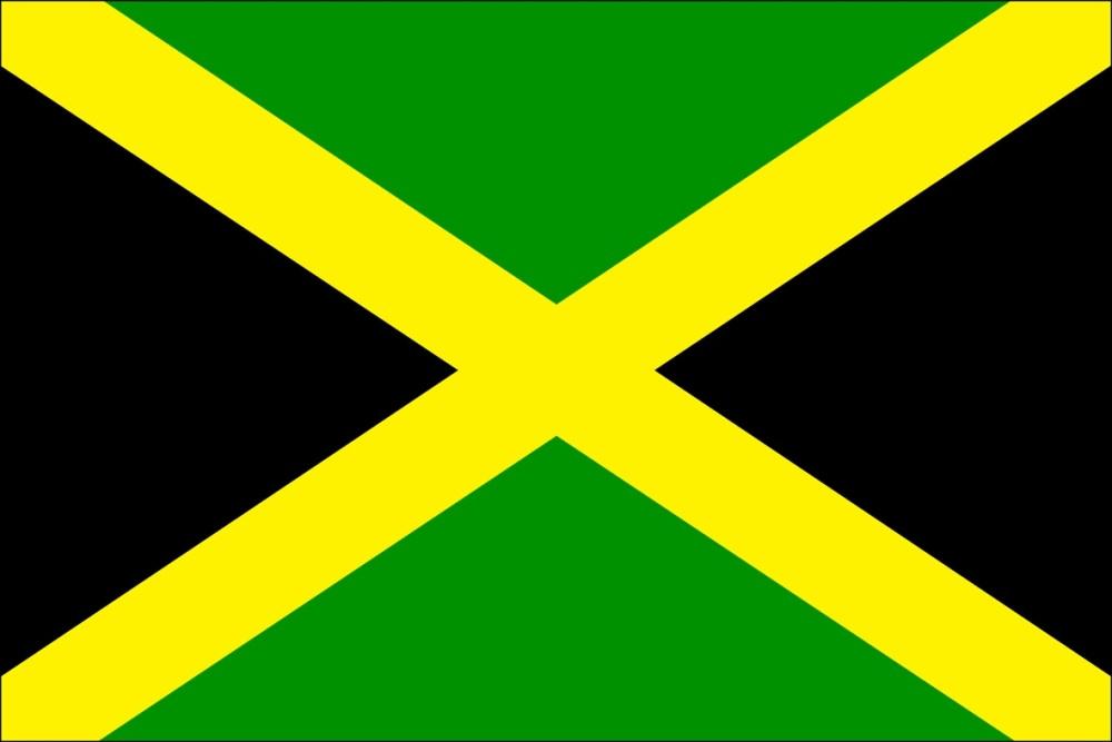 saint david flag